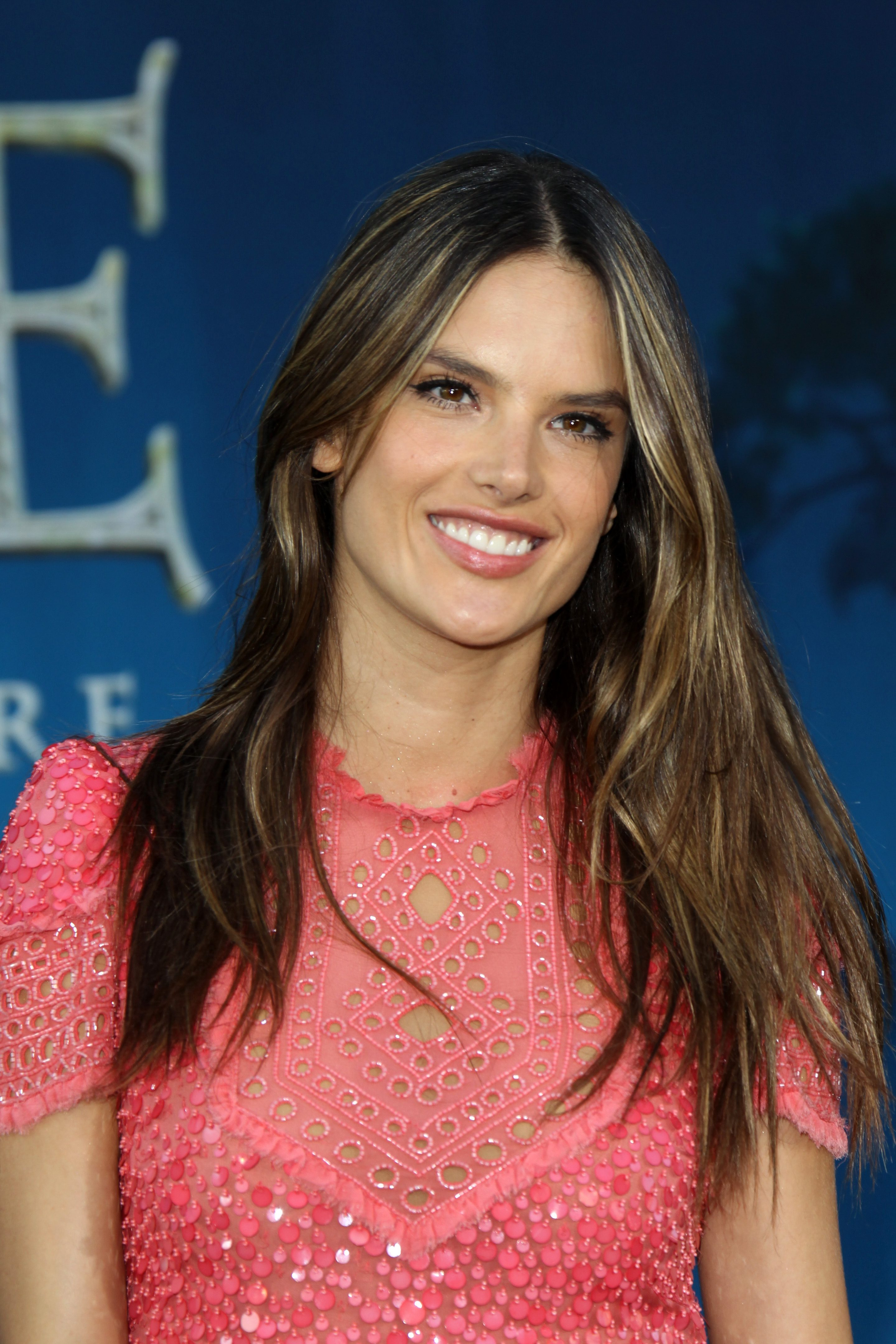Alessandra Ambrosio's Chocolate Brown Hair with Blonde Highlights