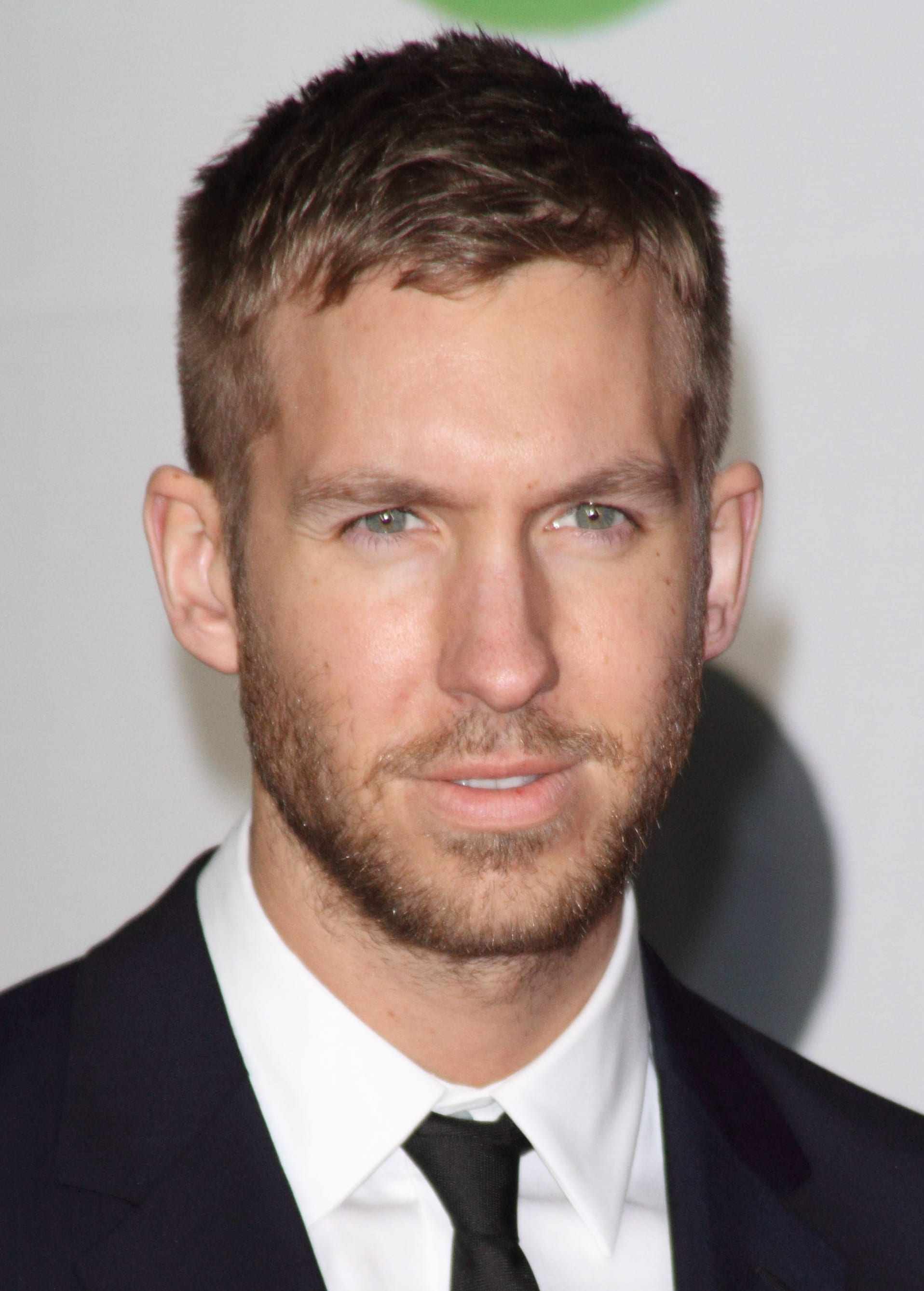 Calvin Harris Signature Stubble