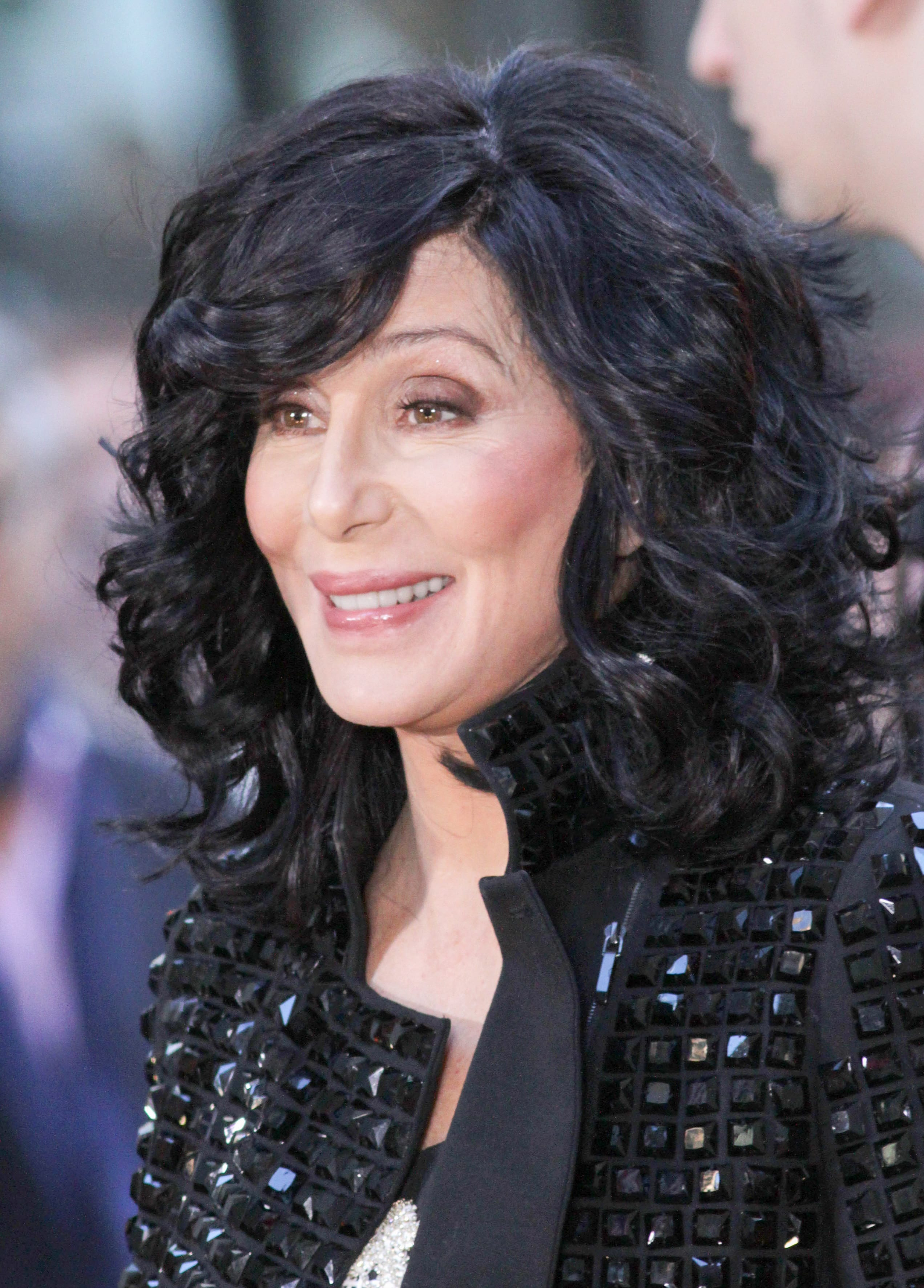 Cher's Black Layered Mane