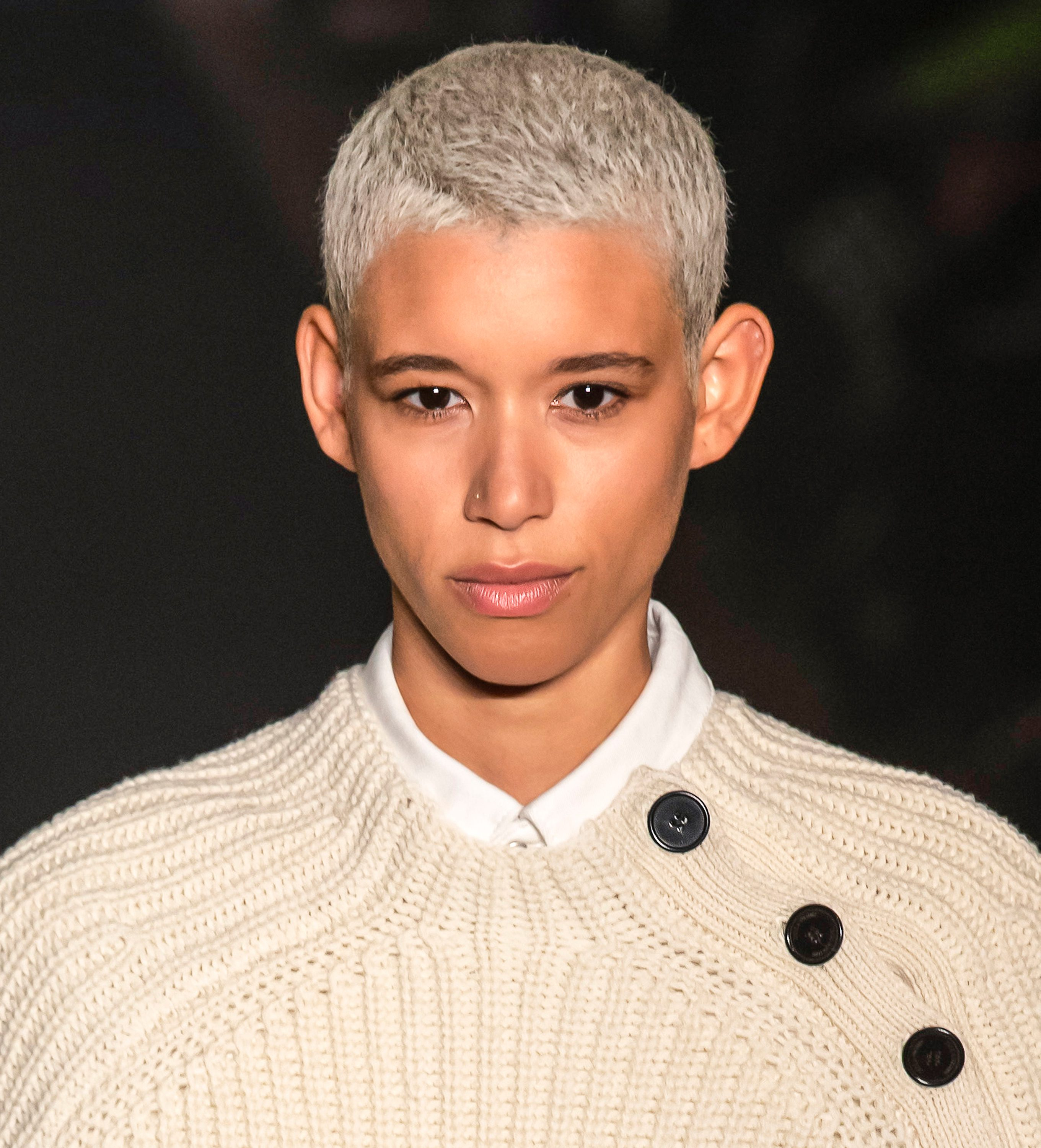 Dilone's Silver and Gray Buzz Cut