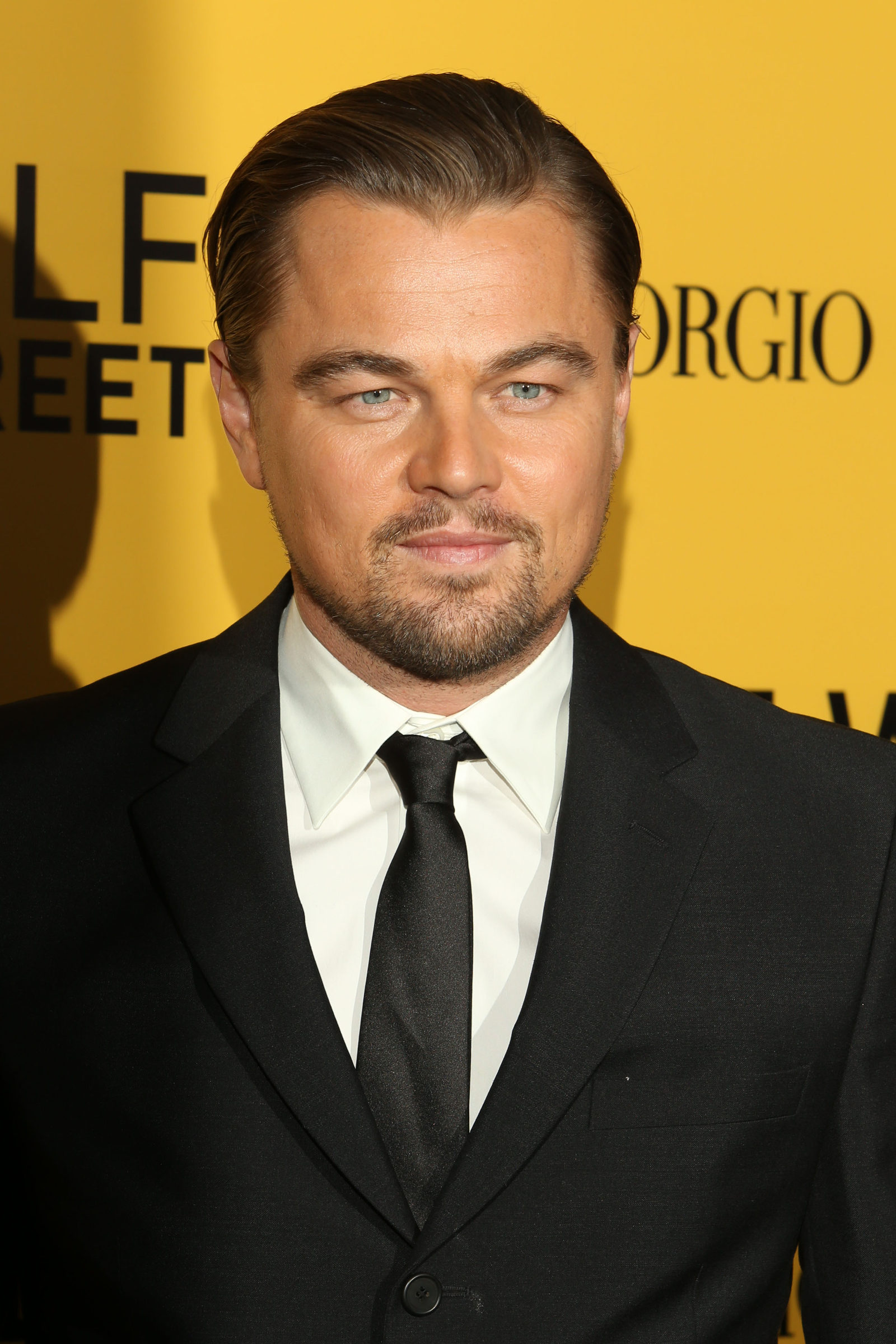 Leonardo DiCaprio - Window's Peak - Slicked Back