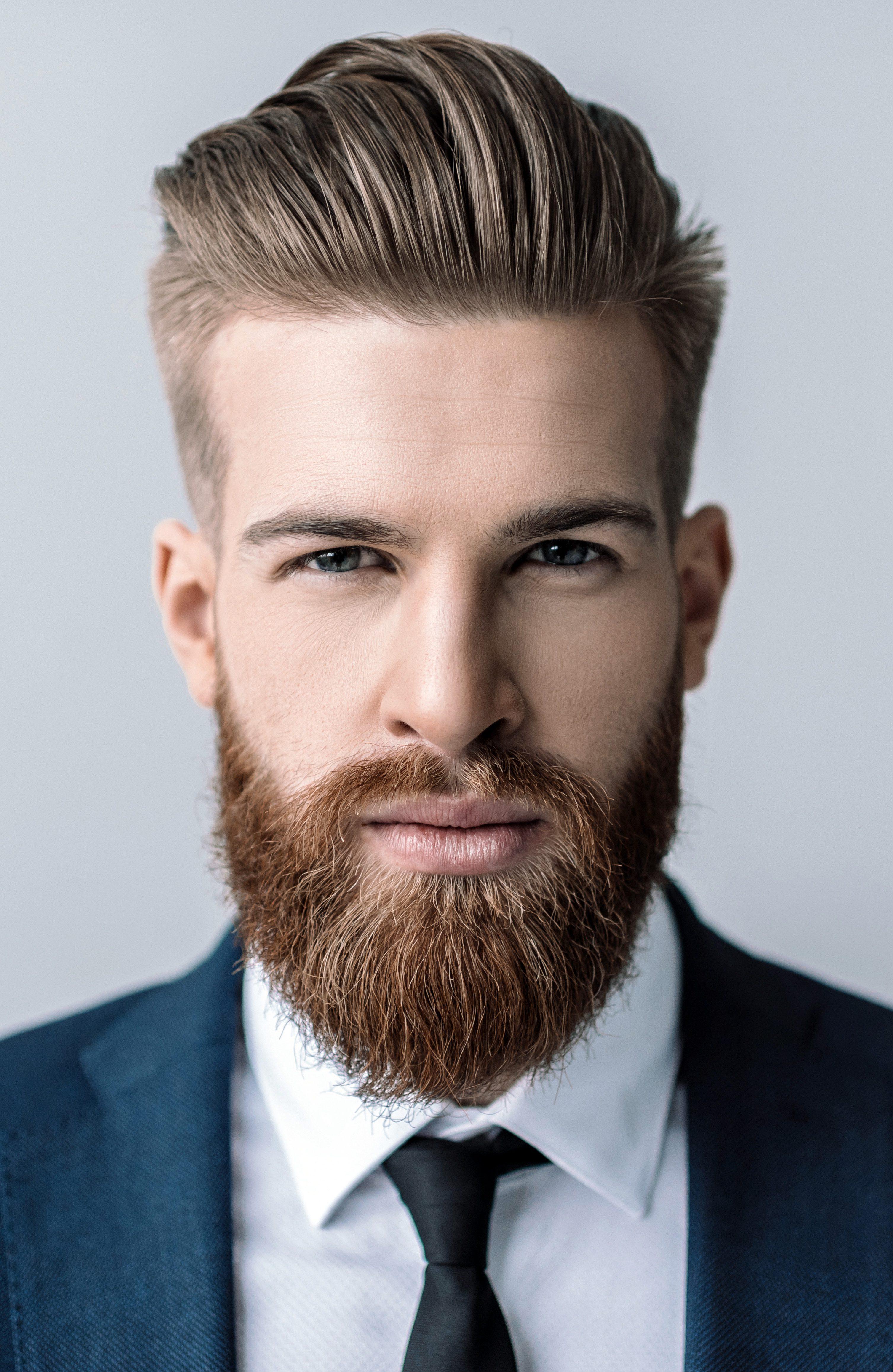 Modern Gentlemanly Viking Beard