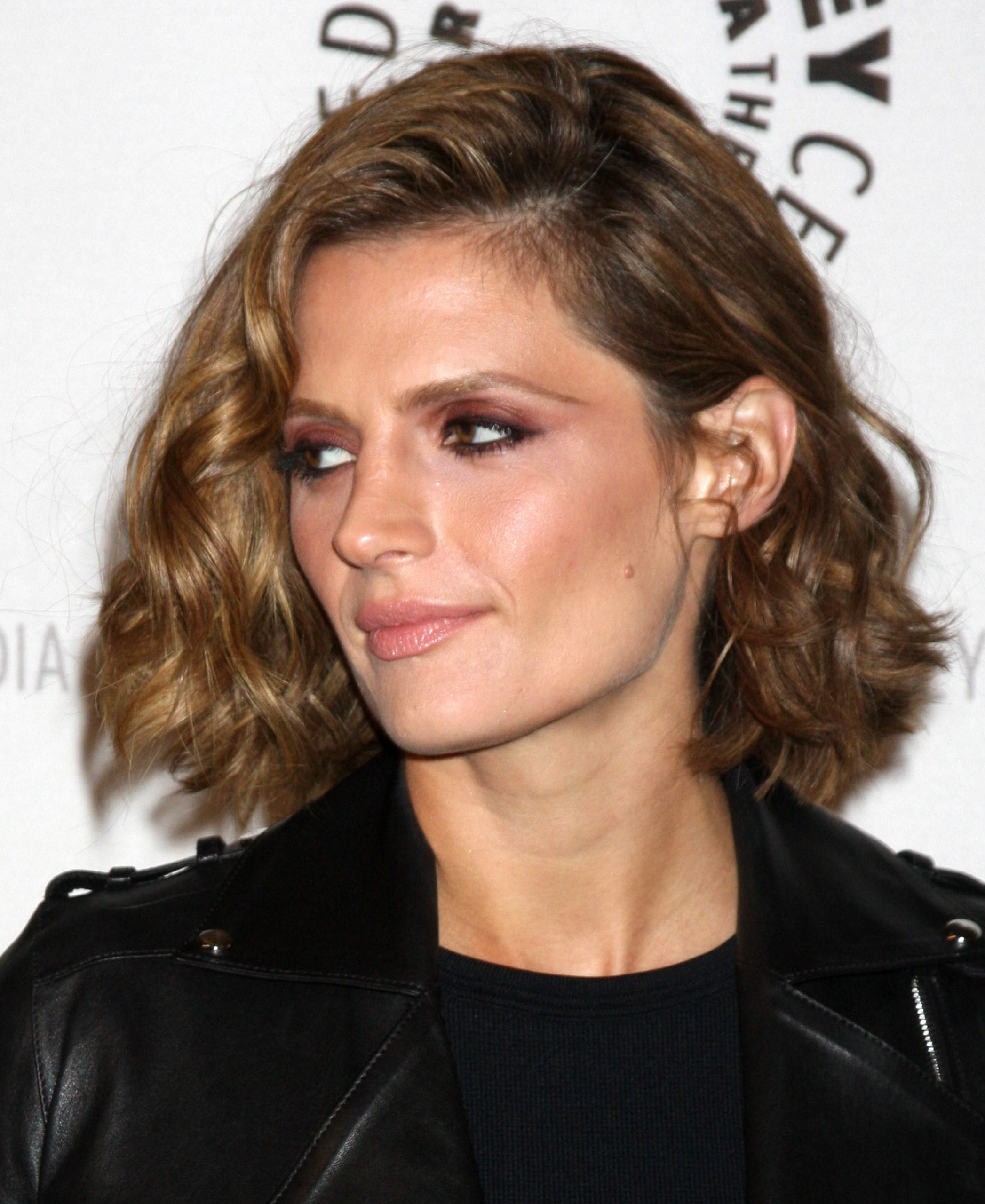 Stana Katic's Side Natural-Part and Curls